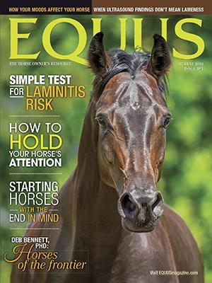 Cover Equus