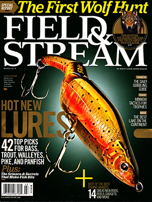 Cover Field Stream