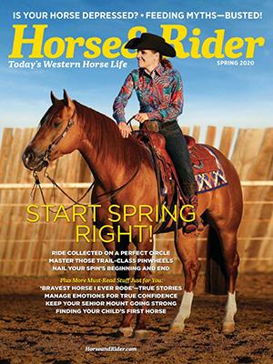 Cover Horse Rider